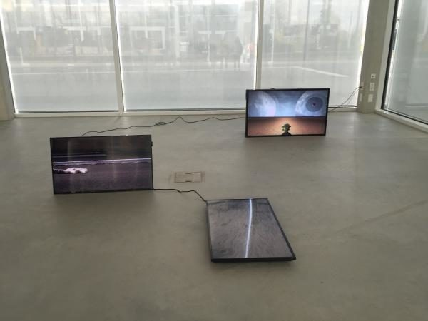 Tank, Killing softly, Zweikanal Videoinstallation mit Ton, 16:9, Loop, 03:02' und 01:12'