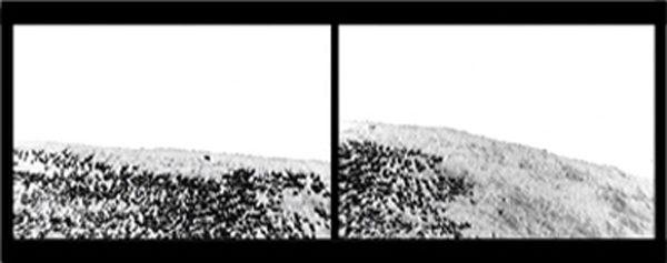 WOLF, 2011 – Videostills aus 2-Kanal-Videoprojektion, Rohmaterial: Nationalpark Mercantour, 2000