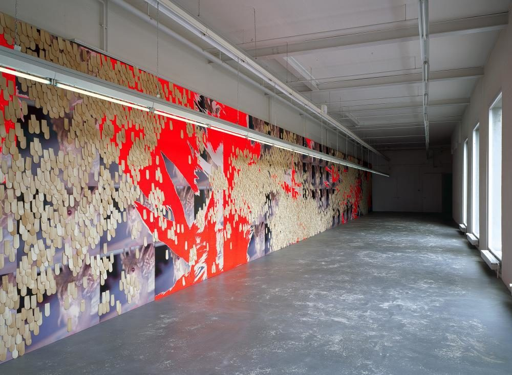 «view over 6 continents; Christine Zufferey and Guests», Kunsthaus Baselland, Muttenz / Basel