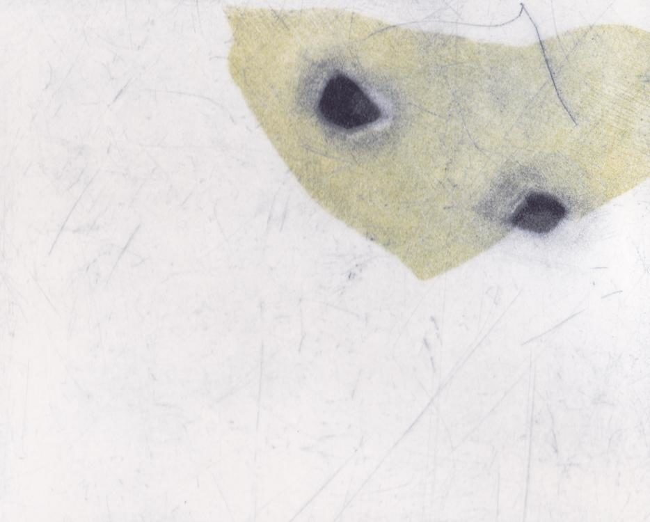 0.t., 2015, 16 x 20 cm, Kaltnadel / Mezzotinto Radierung