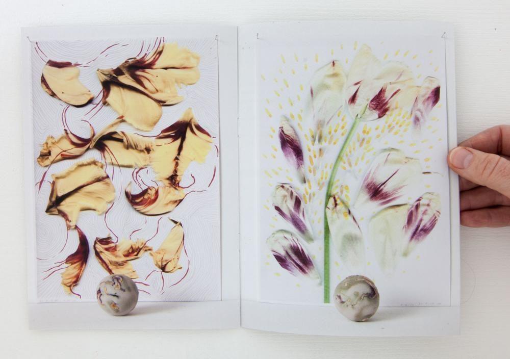 Im Atelier, Serie Hefte, A5 geheftet, Auflage 100 Stk., Blütenkugeln, 12 S.
