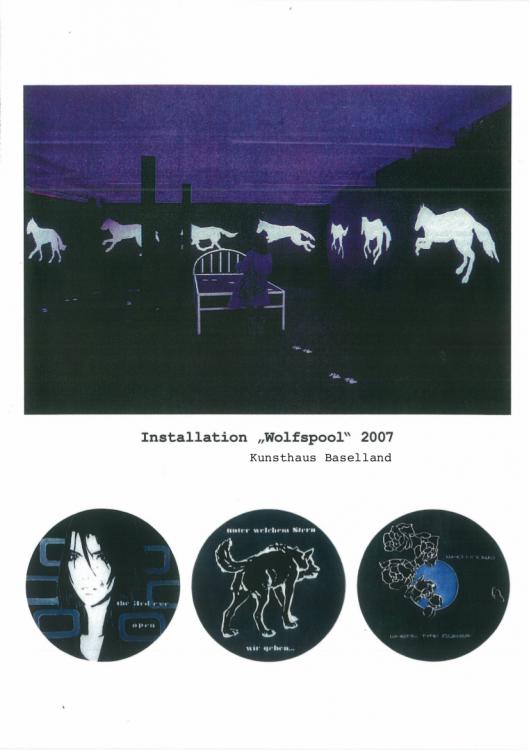 "Installation \""Wolfspool\"" 2007"