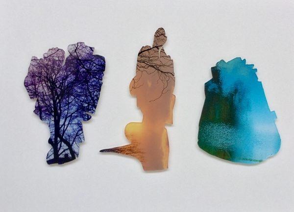 Baum, Mensch, Stein C-Print hinter Plexiglas