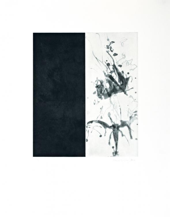 "\"" Notes of Spring\"" Nr. 1, 2010, Aquatint-Pinselätzung, 76 x 56 cm."