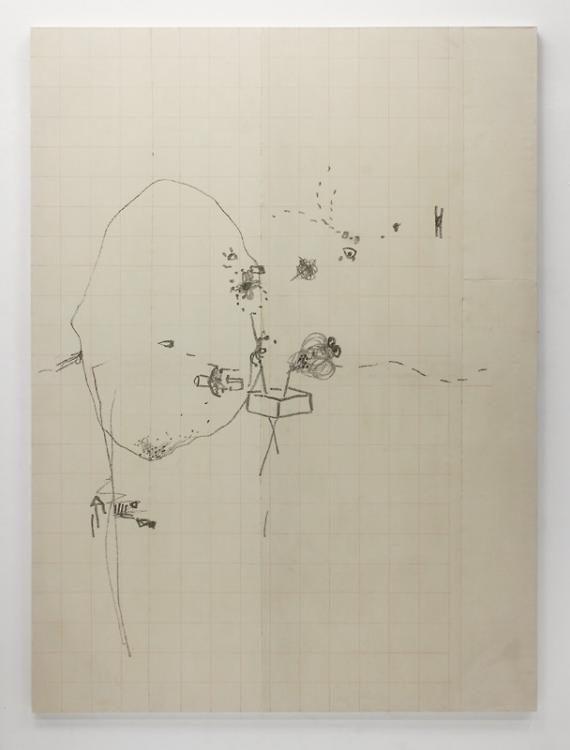 Blow-Up 106, 2013, 230 x 170 cm, Bleistift und Farbstift auf ungrundierter Leinwand