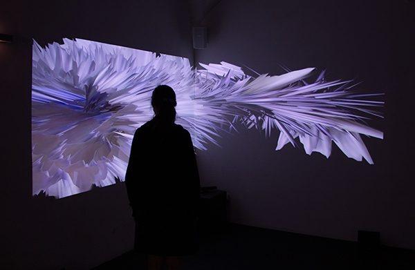 Anima Perplexa, 2014, interaktive Videoinstallation