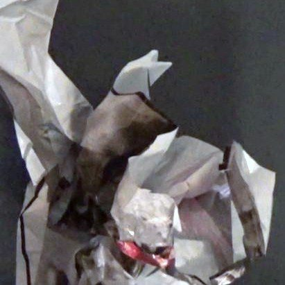 Blüten    2015   Video 3:05 Min loop
