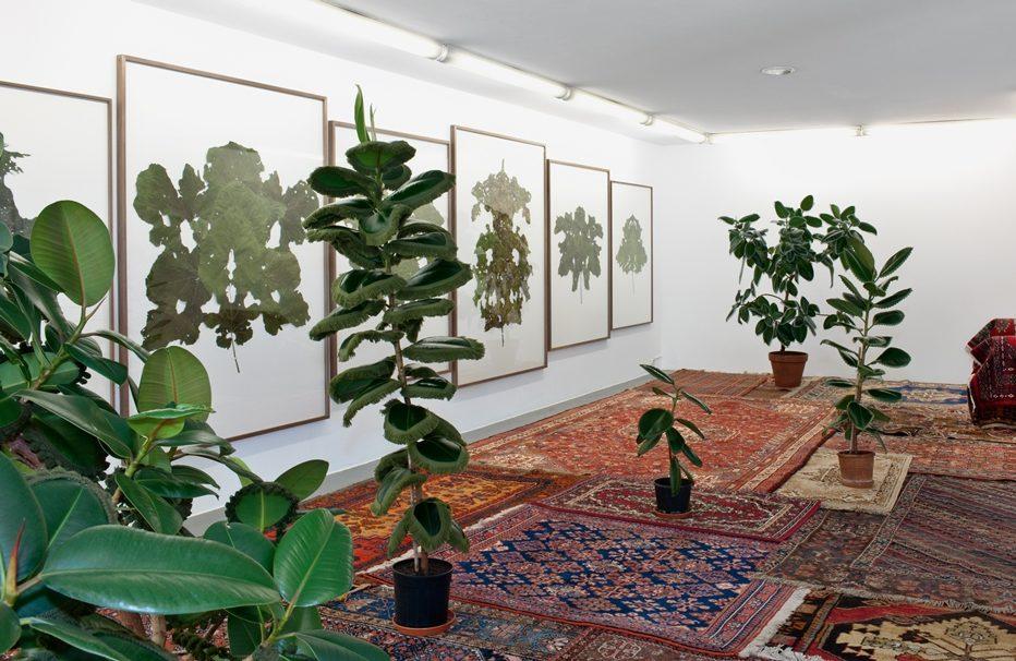 Ausstellungsansicht Kunstverein Friedrichshafen 2012