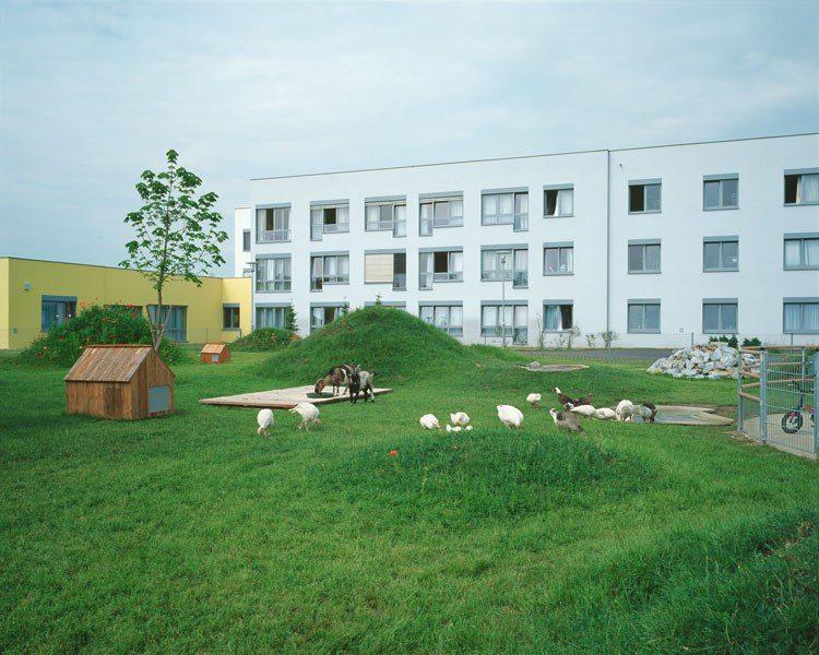 Landschaft mit Tieren, 2008, Kunst im öffentlichen Raum, LPPH Tulln