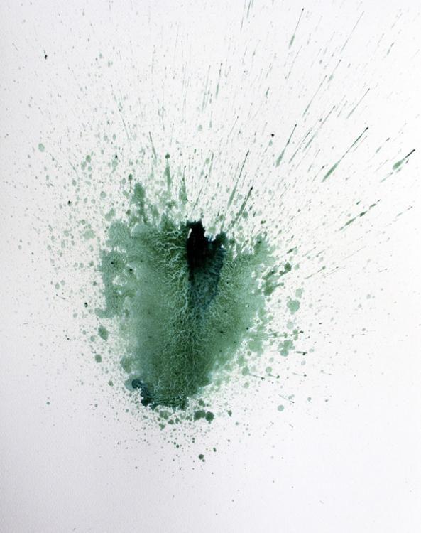 Pure Spittle, 48 Arbeiten auf Papier, Spirulina auf Papier, je 55cmx38cm