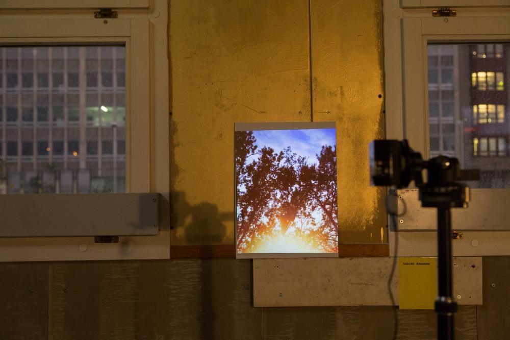 reality check, Videoprojektion/Sound. Remise Zürich, 2012 (Foto: Roman Richer)