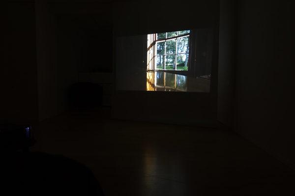 Hidden Beauty, projection, 2018, Kabinett Zürich