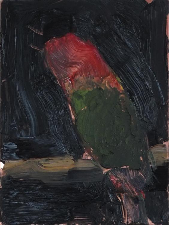 Papagei, 2012, Öl auf Kupferplatte, 20 x 15 cm,