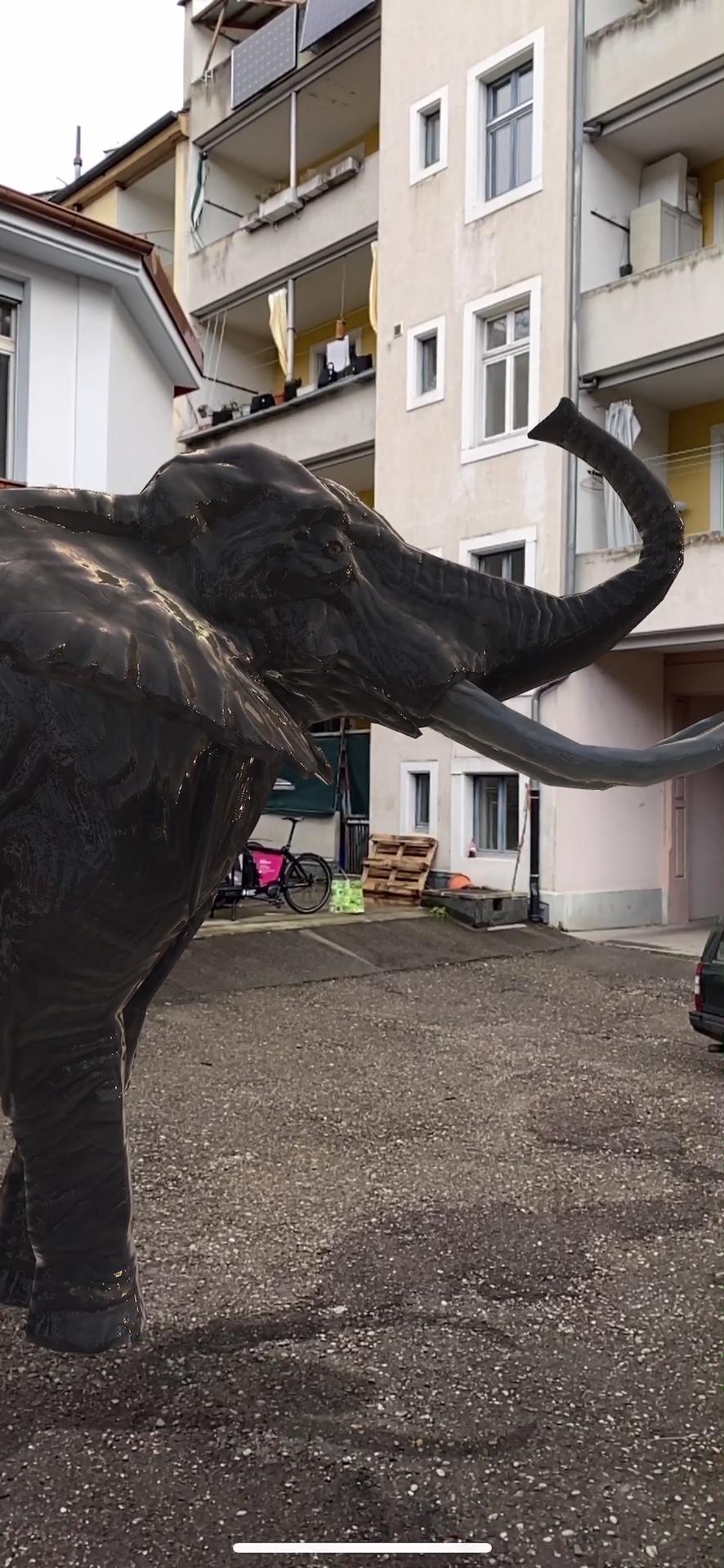 Elefant im Hof original 02
